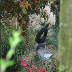 Schaduwtuin met sierappeltjes