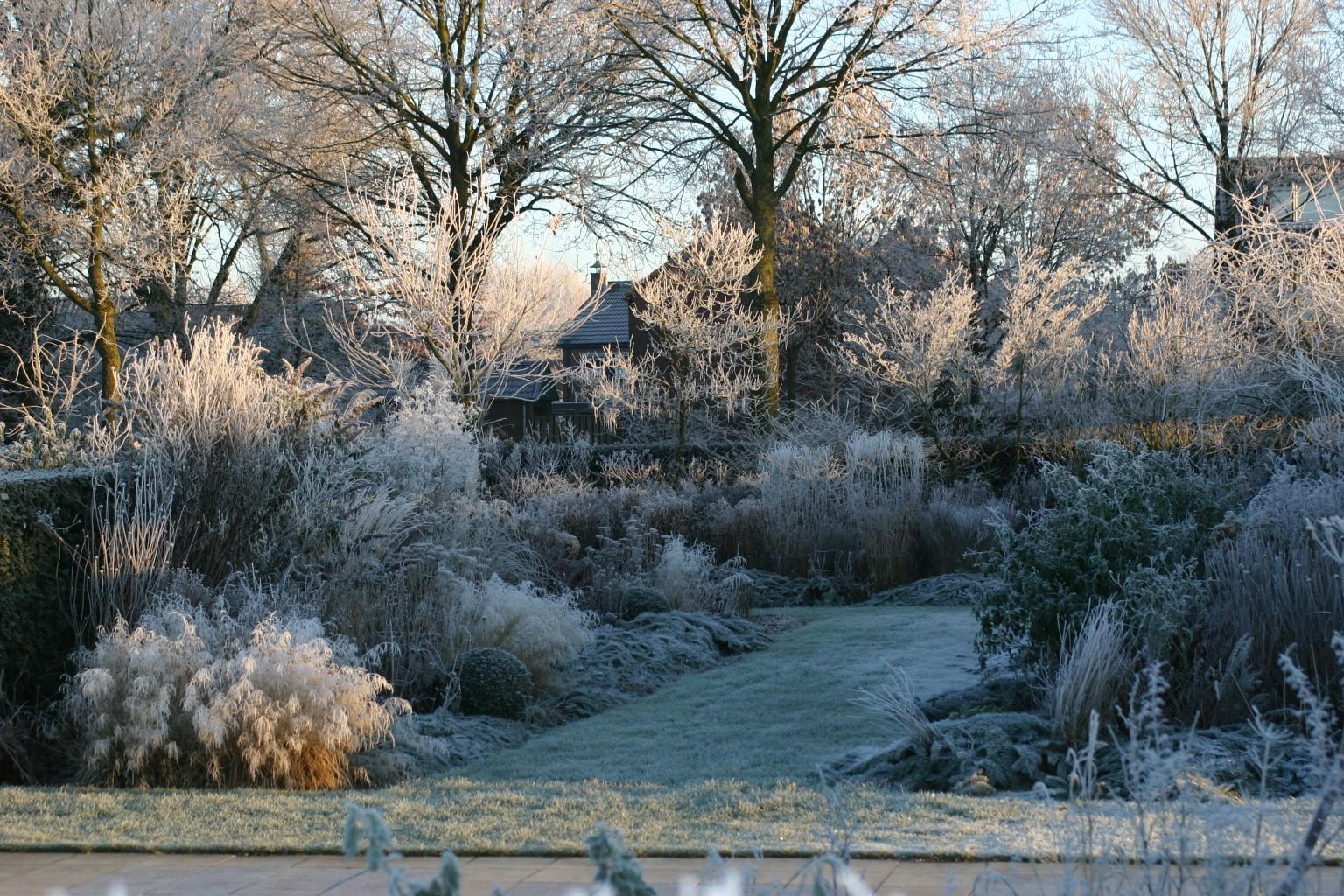winter in de tuinen kijktuinen nunspeet