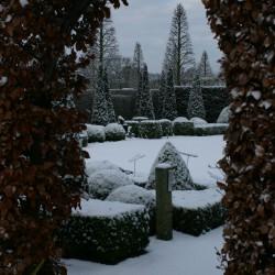 Winter in het voorhof