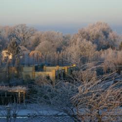 Winter overzicht