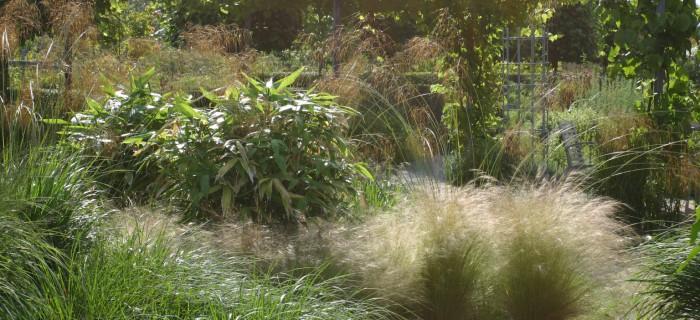 Grassentuin