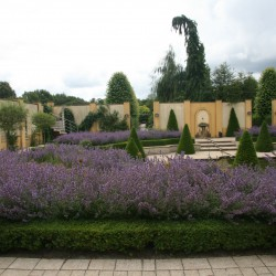 Plaza Alhambra bloemenzee