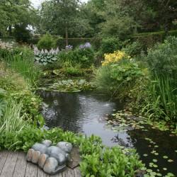 Schaduwtuin natuurlijke vijver