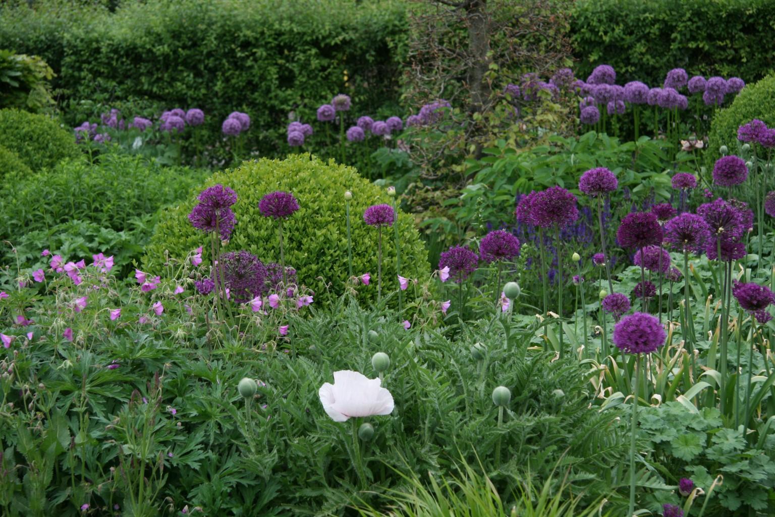 Verrassend Vaste planten borders op kleur - Kijktuinen Nunspeet ZX-17