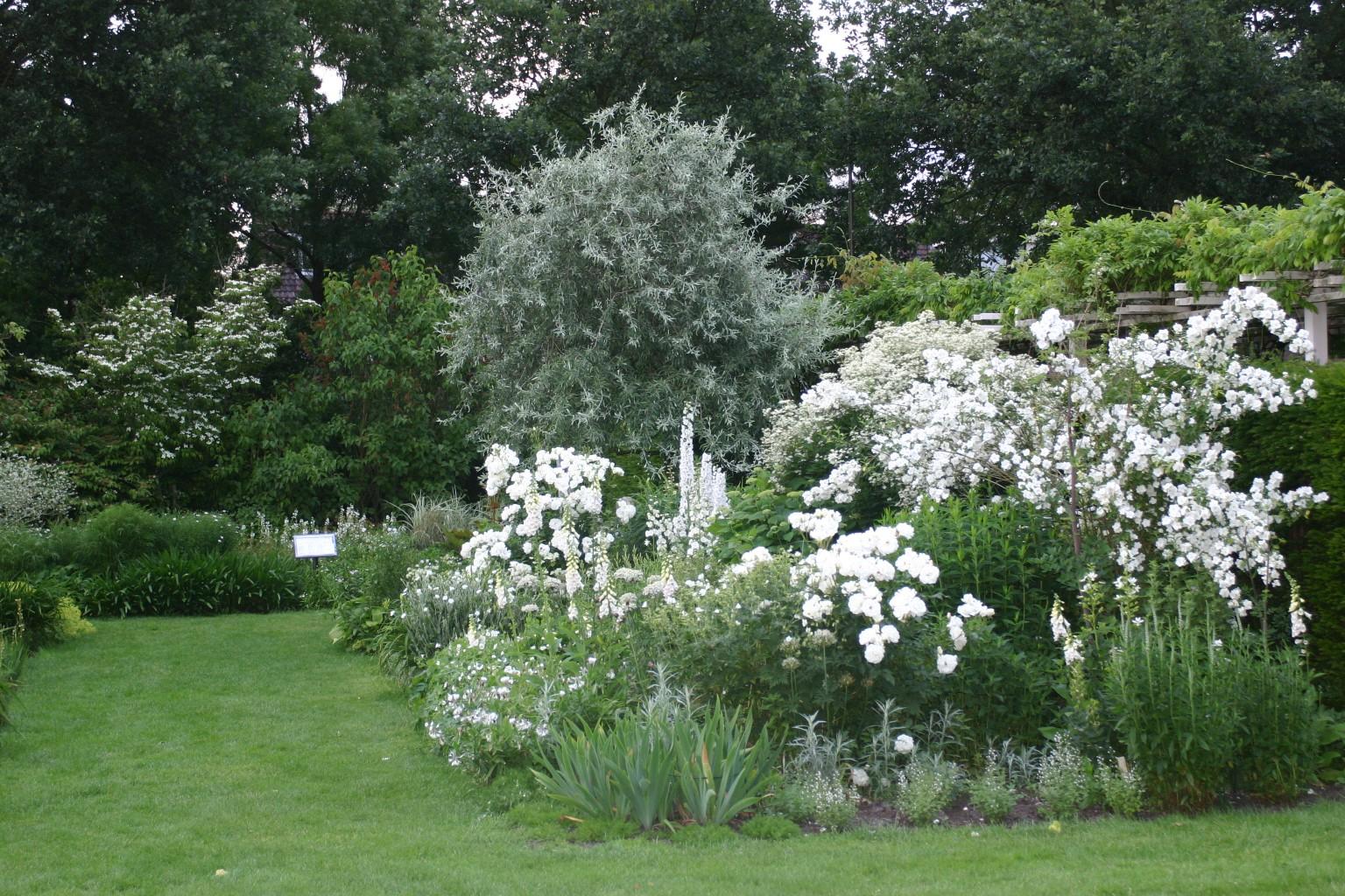Uitgelezene Vaste planten borders op kleur - Kijktuinen Nunspeet VQ-03