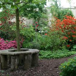 Veentuin beekje met bloeiende azalea's en rododendrons