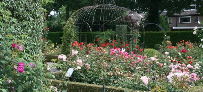Prieel en loofgangen met rozen