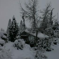 Winter in de rotstuin