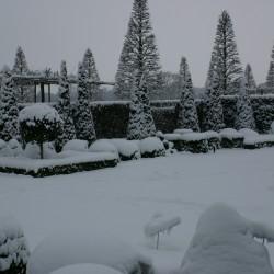 Winter met sneeuw in het voorhof
